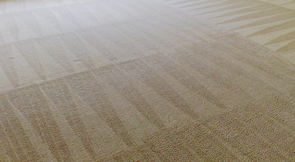 Carpet Cleaning Phoenix Same Day Service Best Prices